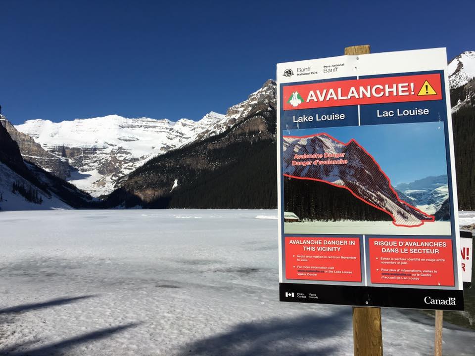 avalanchesign